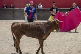 Capea + Humor Amarillo + Cena en Navalcarnero imagen 3