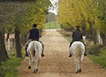 Rutas a caballo por el campo charro imagen 1