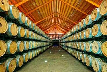 Visita a bodegas y cata de vinos imagen 1