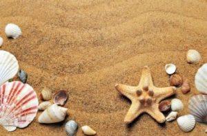 despedidas en la playa