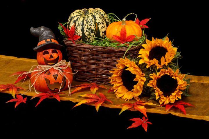 hallowen noche muertos vivientes