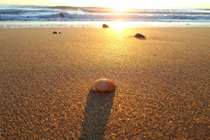 bienvenido verano playa