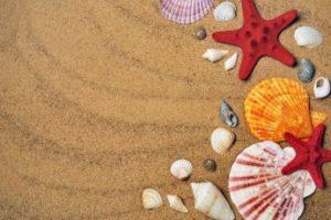 actividades playa