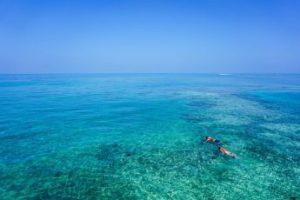 actividades snorkel